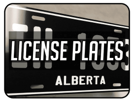 License Plates and Frames